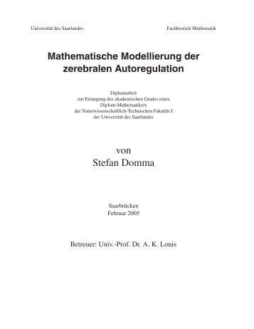 Mathematische Modellierung der zerebralen Autoregulation