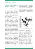 ESC-NEWS - Felix Wuersten - Seite 4