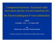 Comparison between fractional order derivation and the ... - IMS
