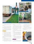 Uma Blumenau melhor para as futuras gerações EIXO 5: - Prefeitura ... - Page 6