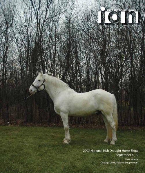 Wild Memo Holder Stallion