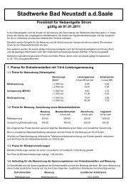 Preisblatt für Netzentgelte Strom ab 01.01.2011 - Stadtwerke Bad ...
