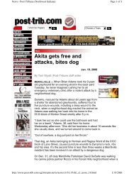 Akita gets free and attacks, bites dog - Understand-A-Bull