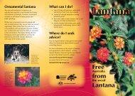 Free from Lantana - Weeds Australia