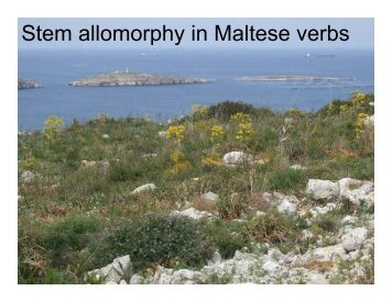 Inflectional Verb Forms in Maltese