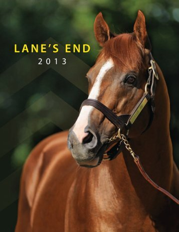 Download the PDF - Lane's End Farm