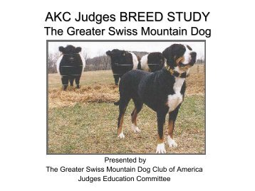 an analysis of the great swiss mountain dog species Breed timeline home galleries  1971 bernese mountain dog club of great britain (parent club) is established   1971 greater swiss mountain dog club america .
