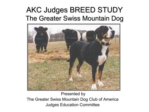 Breed Study Handout - Greater Swiss Mountain Dog Club of America