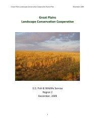 Great Plains Action Plan 121109 Final - Great Plains Landscape ...