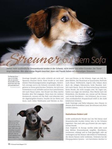 Streuner auf dem Sofa - Schweizer Hunde Magazin