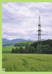 Capitolo 11. Radiazioni - Agenzia provinciale per la protezione dell ...
