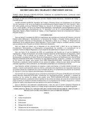 NOM-002-STPS-2010 - Normas Oficiales Mexicanas de Seguridad y ...
