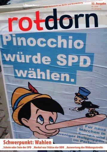 Schwerpunkt: Wahlen - Rotdorn Radio