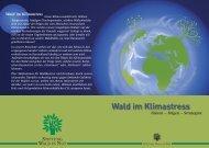 Fakten – Folgen – Strategien Wald im Klimastress