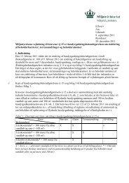 Miljøstyrelsens vejledning til kravene i § 15 ai ...