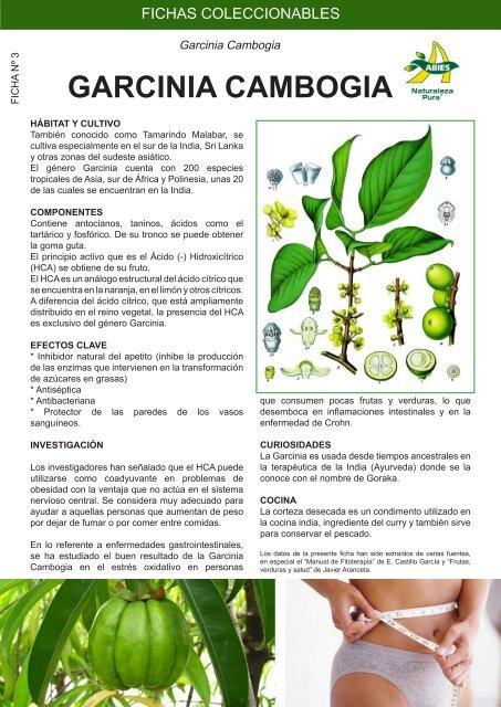 ácido cítrico garcinia cambogia