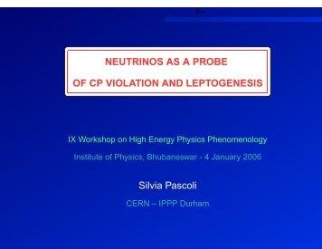 3 – Measuring CP-V phases - whepp-9 - Institute of Physics