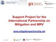 Project Activities - International Partnership on Mitigation and MRV