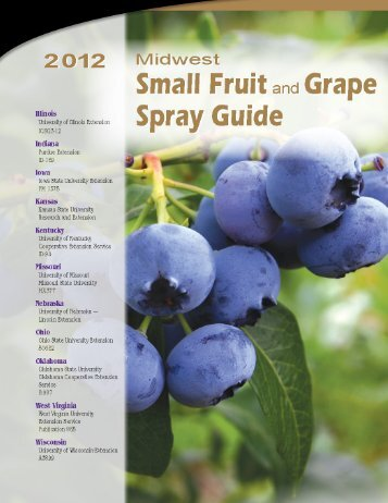 2012 Midwest Small Fruit and Grape Spray Guide - Purdue ...