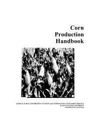 C560 Corn Production Handbook - K-State Research and Extension ...