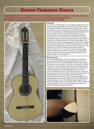 Download het volledige artikel - Heeres Guitars