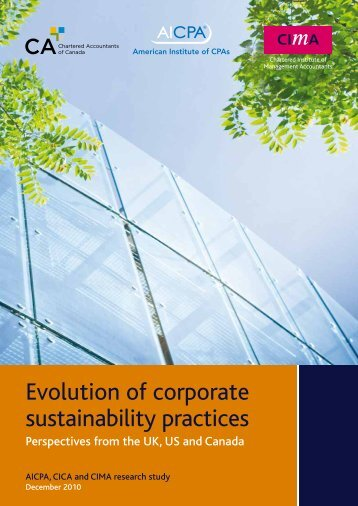 Evolution of corporate sustainability practices Perspectives from the