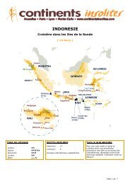 INDONESIE - Continents Insolites