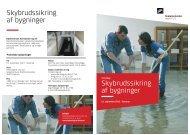 Temadag om Skybrudssikring af bygninger - Vand i Byer