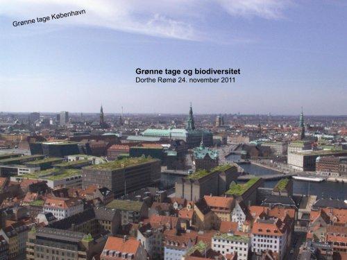 Grønne tage og biodiversitet - Vand i Byer
