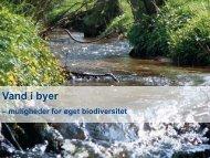 Regnvand og biodiversitet (620 KB) - Vand i Byer