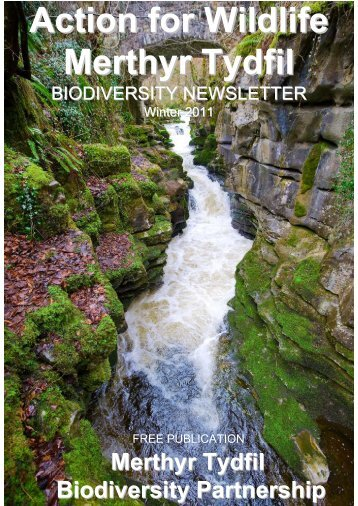 Biodiversity Newsletter Winter 2011 - Merthyr Tydfil County Borough ...