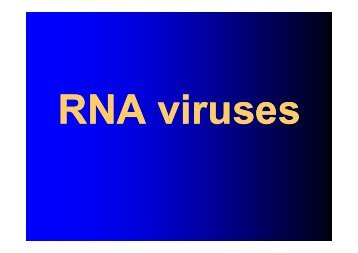 RNA viruses