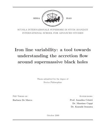 Iron line variability: a tool towards understanding the accretion flow ...