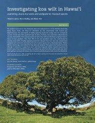 Investigating Koa Wilt in Hawai'i: Examining Acacia koa Seeds and ...