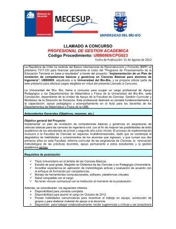 LLAMADO A CONCURSO PROFESIONAL DE GESTION ...