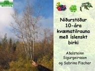 Niðurstöður 10-ára kvæmatilrauna með íslenskt birki