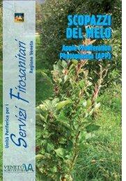PDF (Scopazzi del melo) - Veneto Agricoltura
