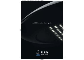 ruud betaled GB2010_1.qxp - Photolight