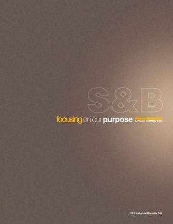 2008 Annual Report - S&B