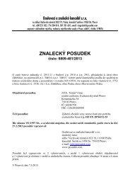 ZNALECKÝ POSUDEK číslo: 6809-481/2013 - e-aukce