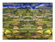 Shah - Future of Surface Irrigation India.pdf - Multiple Use water ...