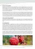 Om skovenes funktioner - Frederikshavn Kommune - Page 2