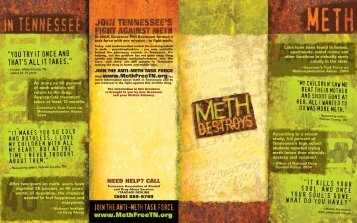 Methamphetamine Brochure - Williamson County Schools