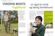 VerDens beDste fuglehund - HUNDEN.dk