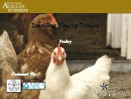 Poultry - Lone Star Healthy Streams Program - Texas A&M University