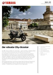 Der robuste City-Scooter