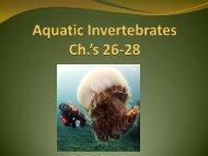 Ch. 26-28 Aquatic Invertebrates