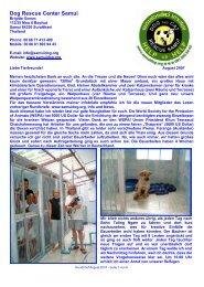 Rundbrief August 2007 - The Dog Rescue Center Samui