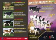 De´pliant 2eme vente ObjEX - Web-agri