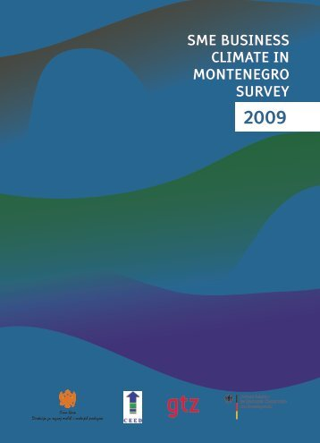 sme business climate in montenegro – survey 2009 - Gtz